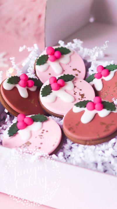 Fun festive gingerbread cookies by Juniper Cakery